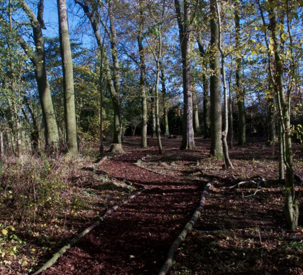 Fleckney COBA Volunteers - Pathway Built